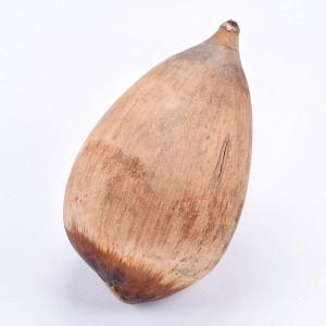 Cacho de Coco Nuss ca. 9-14 cm, 1 Stück